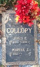 Profile photo:  James E Collopy