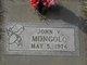Profile photo:  John V. Mongolo