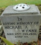 Michael J. Wynne