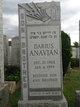 Darius Anavian