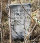 Henry Walter Phelps