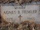 Profile photo:  Agnes B. <I>Lilland</I> Hemler