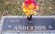 "Carl A. ""Sam"" Anderson"