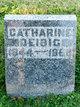 Profile photo:  Catherine <I>Riester</I> Deibig