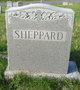 Profile photo:  Sheppard