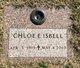 Chloe Etter <I>Martin</I> Isbell