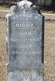 George D. Biddy