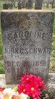 Caroline <I>Ehrenschneider</I> Schwab