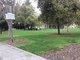 Cumberland Presbyterian Church Cemetery
