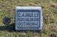 Charles A Hully