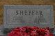 Profile photo:  A Irving Sheffer