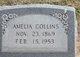 "Profile photo:  Amelia ""Mother Collins"" <I>Fleming</I> Collins"