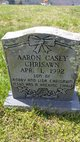 Profile photo:  Aaron Casey Chrisawn