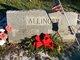 William Henry Allinger