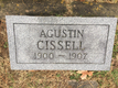 Profile photo:  Agustin Cissell