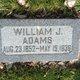 William Johnson Adams