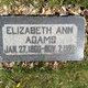 Elizabeth Ann <I>Schofield</I> Adams