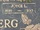 Profile photo:  Joyce L. <I>Wiesehan</I> Achterberg