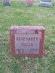 Elizabeth <I>Lester</I> Ellis