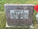 Profile photo:  Albert R. Bollmann