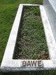 Profile photo:  Dawe