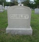 Profile photo:  Curley