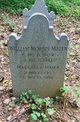 William Morris Maier