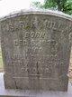 Sarah Ann <I>Schmeck</I> Mull