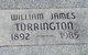 William James Torrington