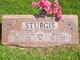 Profile photo:  Steven W. Sturgis