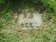 Profile photo:  Belva Britte <I>Neal</I> Deal