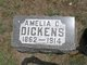 Profile photo:  Amelia C Dickens