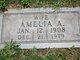 Profile photo:  Amelia A Abramowski