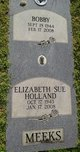 Profile photo:  Elizabeth Sue <I>Holland</I> Meeks