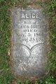 Profile photo:  Alice <I>Cunningham</I> Doheny