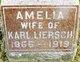Profile photo:  Amelia <I>Quandt</I> Liersch