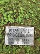 Profile photo:  Eliza Jane <I>Owens</I> Bridgewater
