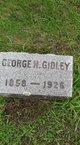George Gidley