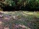 Marblemount Indian Cemetery