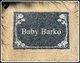 Profile photo:  Baby Barko
