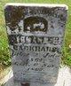 Herman H Backhaus