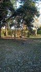 Coley White Family Cemetery