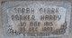Sarah Clark <I>Parker</I> Hardy