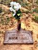 Profile photo: Rev Edward Elbe Stelling