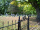 Ives Cemetery