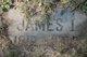 James Jamieson I