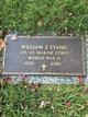 William J Stang