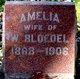 Profile photo:  Amelia Bloedel