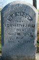William McCoy Bush