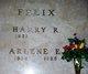 Profile photo:  Arlene Ellen <I>Bramer</I> Felix